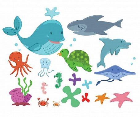 Puzzles Para Colorear De Animales Marinos Bebeazul Top